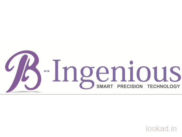 Services of B-Ingenious Software Development | Website Design | Digital Marketing