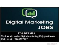 Good salary for good accuracy-data entry home based jobs