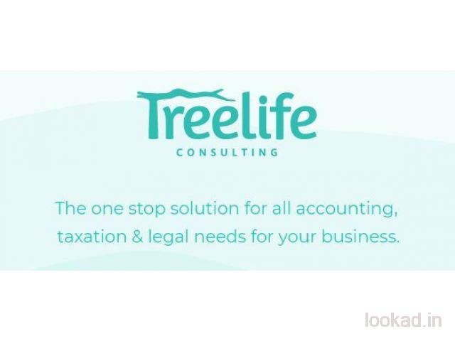 Treelife Consulting - One Stop Solution for All Your Finance Needs