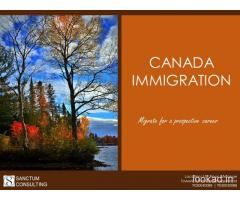 Top-Rate Canada PR Visa Services – Reach Sanctum Consulting
