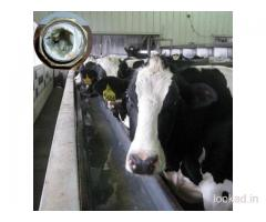 Dairy Farms Water Softener System