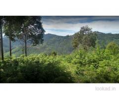 DTCP approved Residential Plots for sale at Kodaikanal