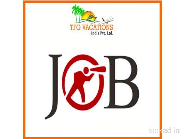 Part Time Work In Tourism Company
