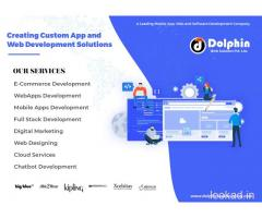 Dolphin Web Solution