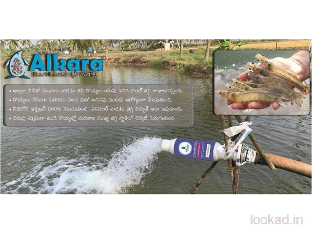 Gardening and Landscape Water Softening Equipments in Nellore