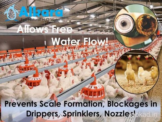 Eco Soft Water Conditioner for Poultry Farms