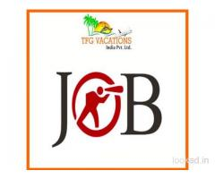 A Job That You will Love