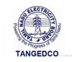 TANGEDCO Recruitment 2020 – 2900 Vacancies