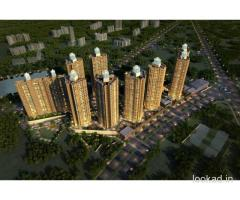 Vijay Orion Thane Call 813062936