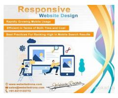 Responsive Website Designing Company Delhi, Responsive Website Design Company Delhi