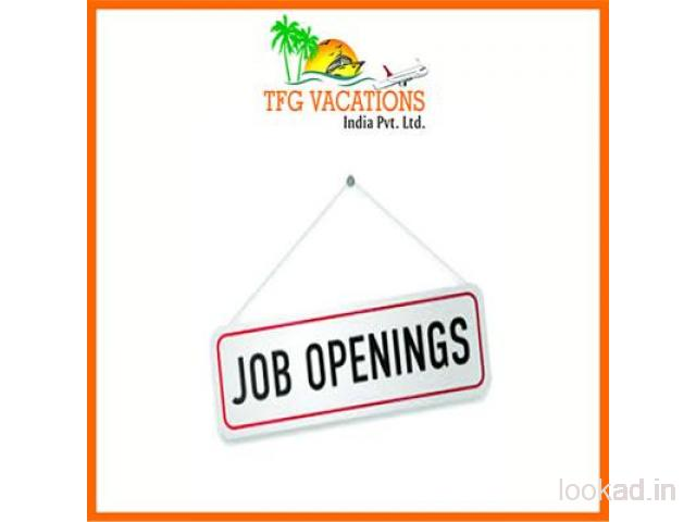 Work for a Travel Website for Few Hours